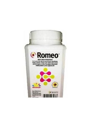 ROMEO KG.1 Miglior Prezzo