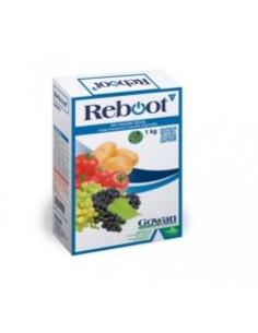 REBOOT GR.500 Miglior Prezzo