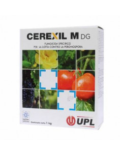 CEREXIL M DG KG.1 Miglior Prezzo