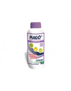 MAGO LT.5 (BAGNANTE) Miglior Prezzo