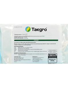TAEGRO GR.375 Miglior Prezzo