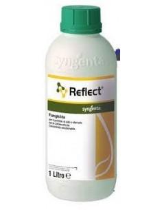 REFLECT LT.1 Miglior Prezzo
