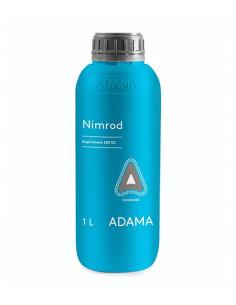 NIMROD 250 EW LT.1 Miglior Prezzo
